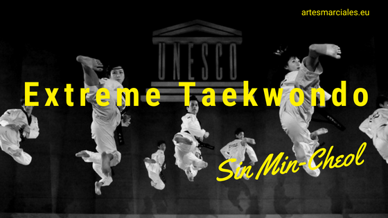 Extreme Taekwondo