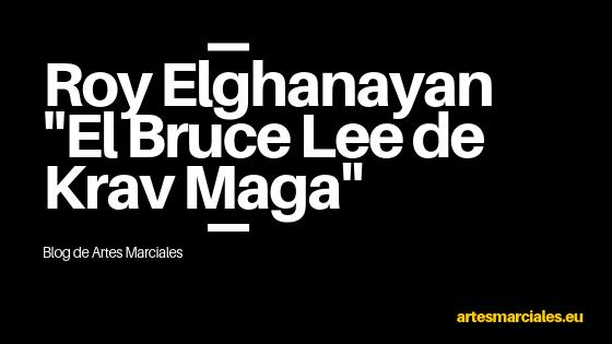 Roy Elghanayan Krav Maga