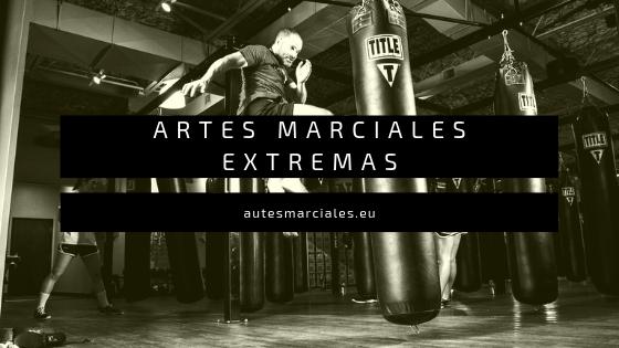 Artes Marciales Extremas