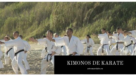 Comprar Kimonos de Karate