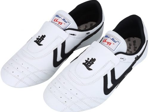 alomejor zapatos de taekwondo